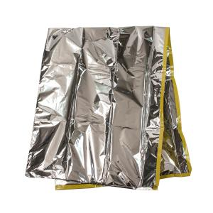 Dynarex-Foil-Baby-Bunting-7071602-400_300.jpg