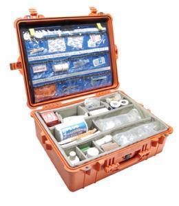 case_1600_EMS-400_300.jpg